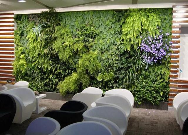 深圳办公室设计装修应该如何做好办公室绿化